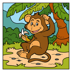 Vector color illustration (little monkey with a banana)