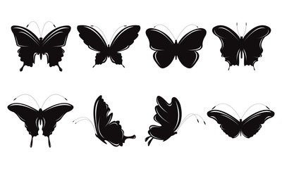 Butterfly With Various Types and Shapes