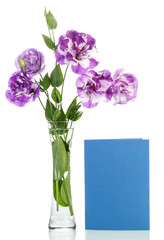 Flowers in vase with a blank postcard isolated on white backgrou