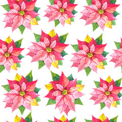 Seamless floral pattern. Background with poinsettia.