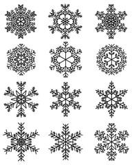 Set of twelve different black snowflakes, illustration