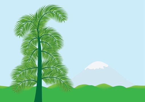 Экзотический южный пейзаж с пальмой