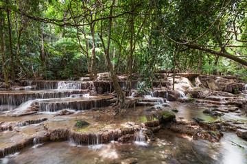 Aluminium Prints Mills Wasserfall im Regenwald