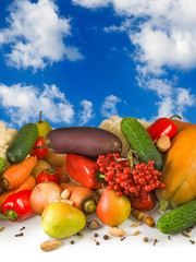 different vegetables on sky background