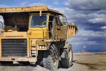 giant transporter