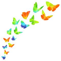 Flight Of Bright Butterflies