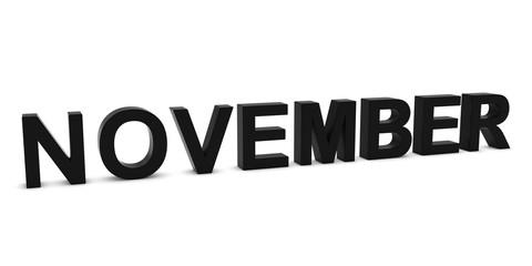 NOVEMBER Black 3D Month Text Isolated on White