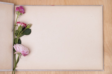photo album and roses Wall mural