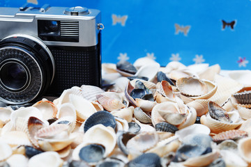 Seashell and camera on the beach - vacation and travel concept