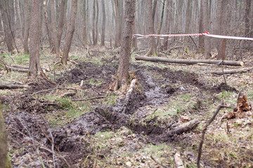The road out of the mud in the woods