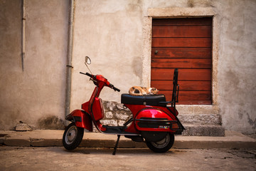 Cat sleeping on seat of red scooter parked in quiet alley