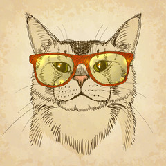 Hipster Cat. Vector illustration, eps10.