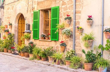 Dorf Haus mit Blumentopf Dekoration
