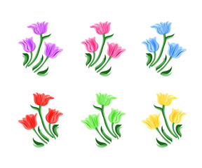 Bouquet with tulip. Spring llustration. Bouquet of tulips isolated on a white background