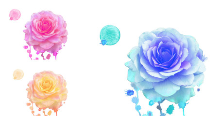 Watercolor  roses set. Watercolor  blue rose, orange rose, pink rose