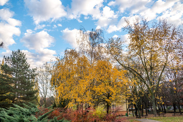 Park between buildings at autumns in Bratislava, Slovakia