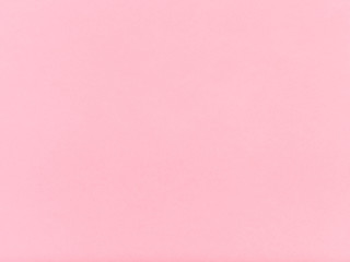 Wall Mural - pink colored sheet of paper