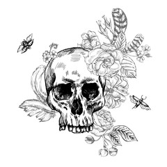 Skull, Flowers Day of The Dead, Black and white Vector illust