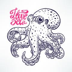 beautiful hand-drawn octopus
