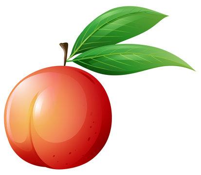 Fresh peach with leaves