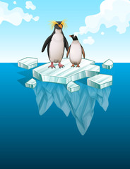 Penguins standing on thin ice