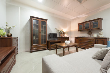 Wooden furniture in living room