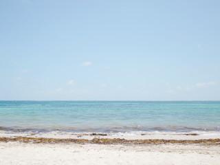 view ocean