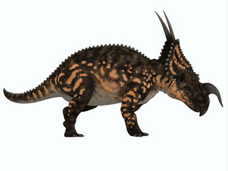 Einiosaurus Side Profile - Einiosaurus was a herbivorous ceratopsian dinosaur that lived in the Cretaceous Age of Montana, North America.