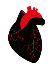 silhouette of human heart