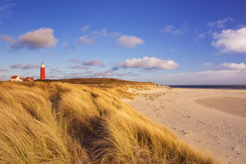 Lighthouse on Texel island in The Netherlands in morning light Wall mural