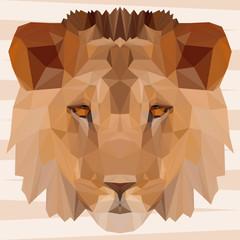 Abstract polygonal geometric triangle lion portrait