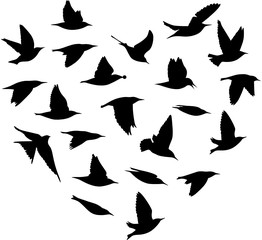 Herzform Vogelschwarm
