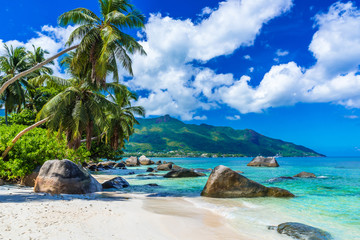 Garden Poster Tropical beach Baie Beau Vallon - Beach on island Mahe in Seychelles