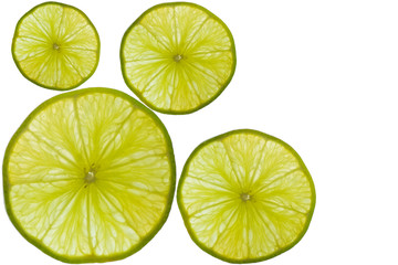 Without seeds Lemon breed in Thailand