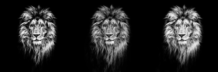 Printed roller blinds Lion Portrait of a Beautiful lion, lion in the dark, oil paints