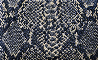 snake skin background texture