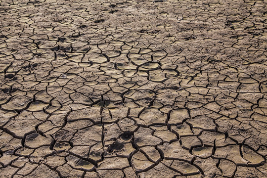 California drought: ffects of climate change and global warming