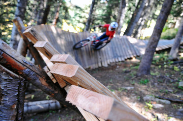 A mountain biker races down one of the many trails at Crested Butte Mountain Resort in Colorado.