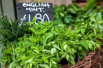 Fresh, green mint, chives and herbs for sale in London street market