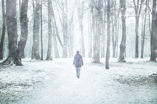 Lonely woman walking in the park with trees at snowy day. Snowfall in park with lonely walking woman.