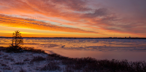 sun sets over an icy muskeg pond in the subarctic of manitoba, canada. three windblown  trees in the midground