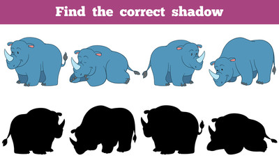 Find the correct shadow (rhino)