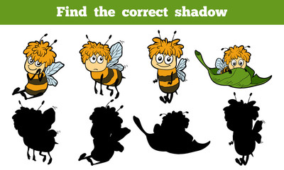 Find the correct shadow (bees)
