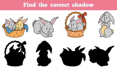 Find the correct shadow (rabbits set)