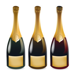 Realistic Wine or Champagne Bottle - Pop the Top of that Bubbly and Let's Partayyyyyyyy!