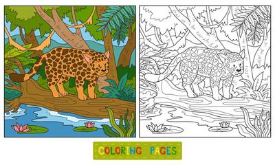 Coloring book (jaguar)