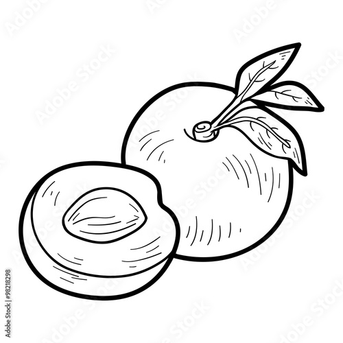 Coloring Book Fruits And Vegetables Nectarine