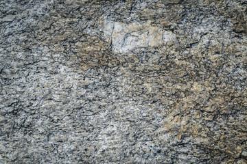 Rock texture background closeup