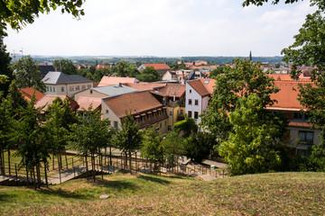 Pirnaer Altstadt und Schlosstreppe