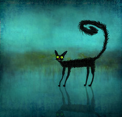 Black Cat Reverberant on Smooth Background
